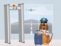 Chien de drogue dans l'aéroport Image stock
