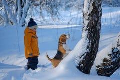 Chien de garçon et de briquet dans la forêt neigeuse d'hiver Photographie stock libre de droits