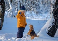Chien de garçon et de briquet dans la forêt neigeuse d'hiver Photo libre de droits
