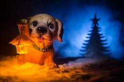 Chien de jouet - un symbole de la nouvelle année sous la neige dans la perspective du sapin s'embranche Le chien de jouet comme s Image stock