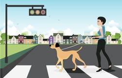 Chien de laisse à travers la rue. Photo stock