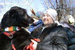 Chien de chien-loup irlandais et son propriétaire à la célébration de jour du ` s de St Patrick à Moscou Images stock