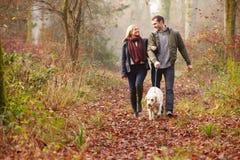 Chien de marche de couples par la région boisée d'hiver Image libre de droits