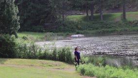Chien de marche de femme en parc boisé de lac banque de vidéos