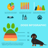 Chien de teckel jouant l'illustration plate infographic d'animal domestique de chiot de symboles de style d'ensemble d'éléments d Photos stock