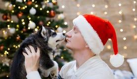 Chien de traîneau d'homme et de chiot, chapeau de Santa Claus, fin  Images libres de droits