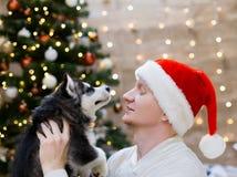 Chien de traîneau d'homme et de chiot, chapeau de Santa Claus, fin  Photo stock