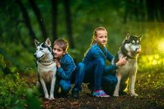 Chien de traîneau de garçon et de fille aussi bien que de chien sur le fond de la forêt Photographie stock