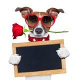 Chien de valentines Photographie stock