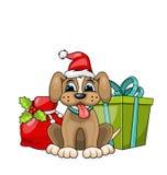 Chien drôle portant Santa Hat avec des boîte-cadeau de Noël Photographie stock libre de droits