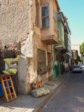 Chien enchaîné devant une vieille maison photo libre de droits