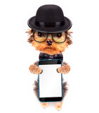Chien habillé comme bandit de Mafia avec le téléphone Image libre de droits