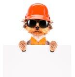 Chien habillé comme constructeur avec la bannière image libre de droits