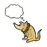 chien heureux de bande dessinée dans le grand collier avec la bulle de pensée Image stock