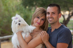 Chien maltais d'animal familier de famille Photographie stock libre de droits