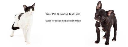 Chien noir et blanc Cat Cover Photo Image stock