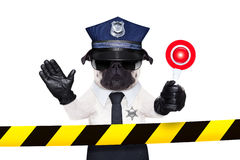 Chien policier Photographie stock