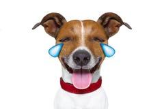 Chien riant pleurant muet d'émoticône ou d'Emoji images stock