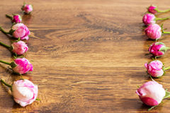 Chien Rose Pink Rosa Canina Flowers Images libres de droits