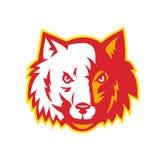 Chien sauvage Wolf Head Front Photos libres de droits