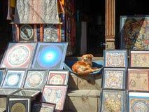 Chien se reposant en dehors d'une boutique de peinture de mandala Photographie stock libre de droits