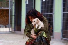 chiens dans l'abri et la femme de chien Refuge pour animaux Photographie stock libre de droits
