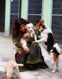 chiens dans l'abri et la femme de chien Refuge pour animaux Photo stock