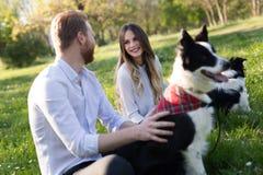 Chiens de caresse et de marche de beaux couples dehors Photo stock
