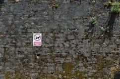 Chiens interdits Photographie stock