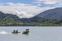2 chiens sur la tête de naviguer le bateau de longue queue Photos libres de droits