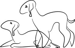 Chiens terriers de Bedlington illustration stock