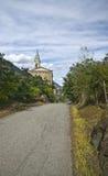 Chiesa & uva Fotografia Stock