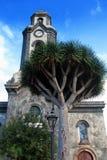 Chiesa con il grande albero del draco Fotografia Stock Libera da Diritti