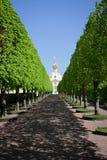 Chiesa del palazzo di Peterhof Fotografia Stock