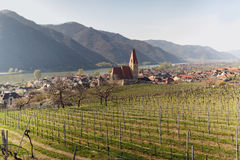 Chiesa del presupposto di vergine Maria in città di Weissenkirchen nel der Wachau con le vigne nella priorità alta l'austria Fotografia Stock Libera da Diritti