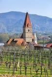 Chiesa del presupposto di vergine Maria con le vigne nella priorità alta Weissenkirchen nel der Wachau, Niederösterreich Immagini Stock Libere da Diritti