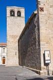 Chiesa della basilica della st Basilio. Troia. La Puglia. L'Italia. Fotografia Stock Libera da Diritti