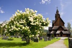 Chiesa della Norvegia Immagini Stock