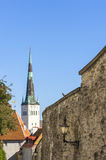 Chiesa della st Olaf a Tallinn, Estonia Immagine Stock