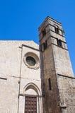 Chiesa della st Pancrazio. Tarquinia. Il Lazio. L'Italia. Fotografia Stock Libera da Diritti