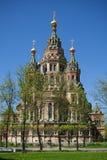 Chiesa della st Peter e Paul Peterhof Fotografia Stock