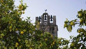Chiesa di Catedral di vecchia città di Faro Santa Maria Il Portogallo Algarve video d archivio
