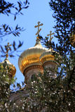 Chiesa di Mary Magdalene, Gerusalemme Immagini Stock