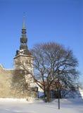 Chiesa di Niguliste a Tallinn fotografia stock libera da diritti