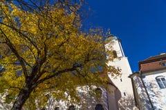 Chiesa di pellegrinaggio di Wies Wieskirche in alpi, Baviera, Germania Fotografia Stock Libera da Diritti