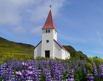 Chiesa di Vik i Myrdal nel villaggio Islanda di Vik Fotografia Stock Libera da Diritti
