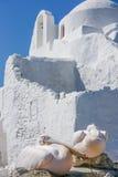 Chiesa e pellicani Fotografie Stock