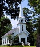 Chiesa nei pini Fotografia Stock