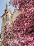 Chiesa storica in primavera Fotografia Stock Libera da Diritti