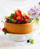 Chiffon cake with summer berries Stock Image